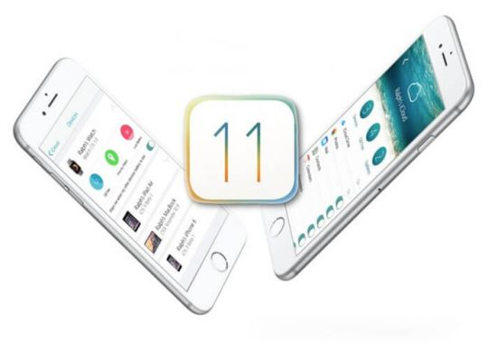 Silver Point-instalar-iOS-11